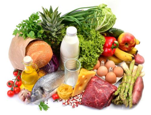 Ernährungstraining